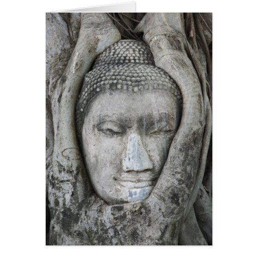 Sandstone head of Buddha surrounded by tree Greeting Card
