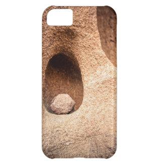 Sandstone Still Life iPhone 5C Case