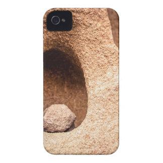 Sandstone Still Life Case-Mate iPhone 4 Case