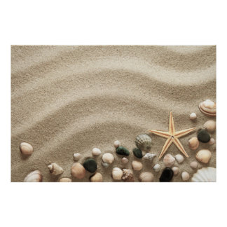 Sandy Beach Background With Shells And Starfish Poster