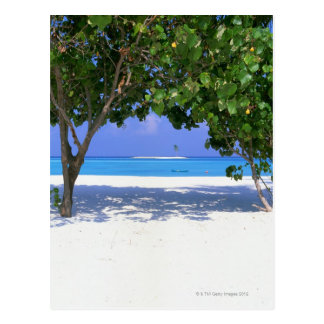 Sandy Beach Postcard
