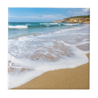 Sandy beach sea waves and mountain at coast ceramic tiles