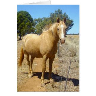 Sandy_Brown_Horse,_Greeting_Card Card