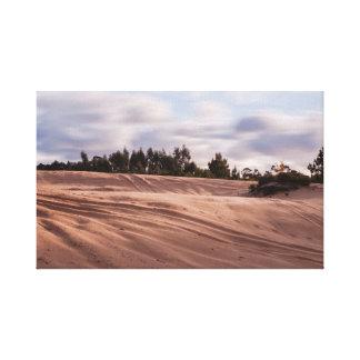Sandy Landscape Canvas Print