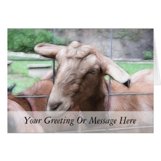 Sandy The Goat At The Gate Card