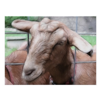 Sandy The Goat At The Gate Poster