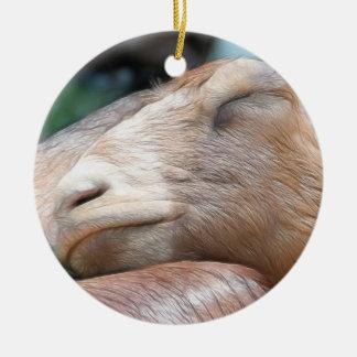 Sandy The Goat - Nap Time! Round Ceramic Ornament