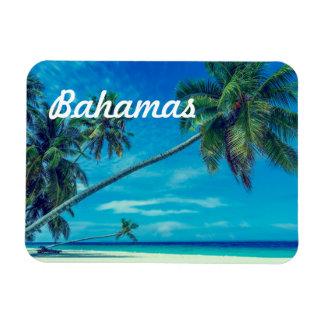 Sandy White Beach with Tropical Palms Bahamas Rectangular Photo Magnet