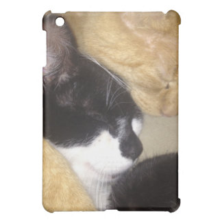 Sandybean and Foofy snuggling for nap time Case For The iPad Mini