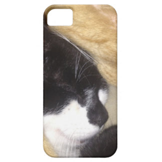 Sandybean and Foofy snuggling for nap time iPhone 5 Cover