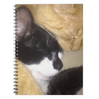 Sandybean and Foofy snuggling for nap time Notebook