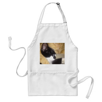 Sandybean and Foofy snuggling for nap time Standard Apron