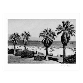 Santa Barbara, CA West Beach View Photograph Postcard