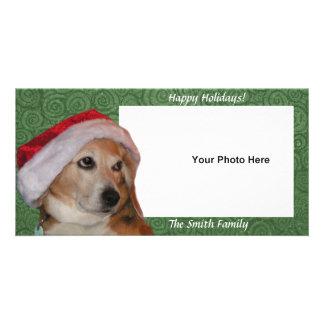 Santa Beagle Photo Christmas Card
