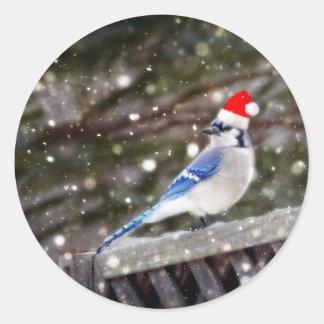 Santa Blue Jay Round Sticker