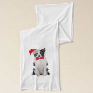Santa Border Collie Scarf