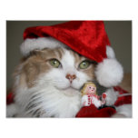 Santa cat - christmas cat - cute kittens poster