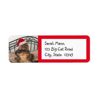 Santa Cat Return Address Labels
