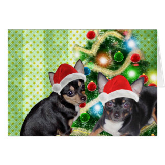 Santa Chihuahua Mickey Angel Merry Christmas Card