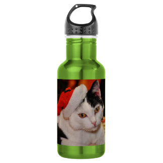 Santa claus cat - merry christmas - pet cat 532 ml water bottle