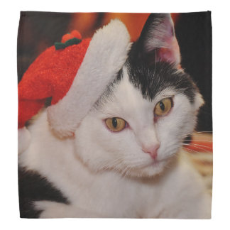Santa claus cat - merry christmas - pet cat bandana