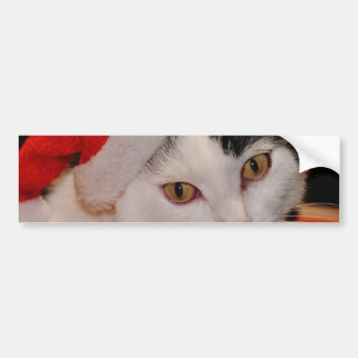 Santa claus cat - merry christmas - pet cat bumper sticker