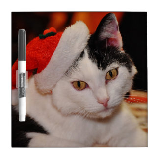 Santa claus cat - merry christmas - pet cat dry erase board