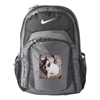 Santa claus dog -funny pug - dog claus backpack