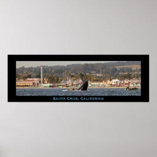Santa Cruz Beach Boardwalk Humpback Whale Poster