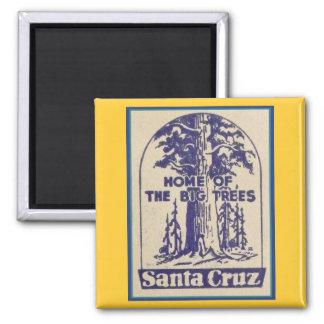 Santa Cruz Califonia - Home of the Big Trees Magnet