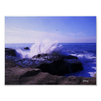 Santa Cruz Seashore Poster