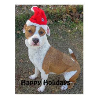 Santa Dog #3 Postcard