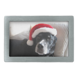 Santa Dog-Labrador Rottweiler Mix Belt Buckles