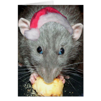 Santa Dumbo rat card
