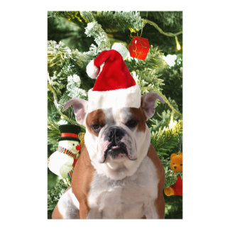 Santa Hat Bulldog Christmas Tree Snowman Gift Box Stationery Design