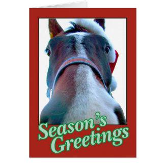 Santa Horse Christmas Card