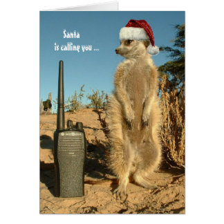 Santa is calling you - Seasons greetings 3 Card