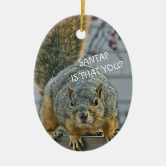 """SANTA, IS THAT YOU?""  WIDE- EYED SQUIRREL ORNAMEN CERAMIC ORNAMENT"