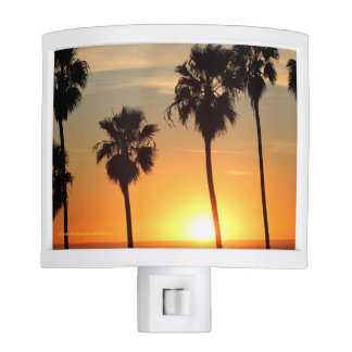 Santa Monica Palm Tree Sunset - Nite Light