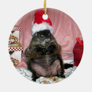 Santa Moses Pet Groundhog Christmas Ornament