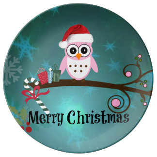 Santa Owl Christmas Greetings Plate