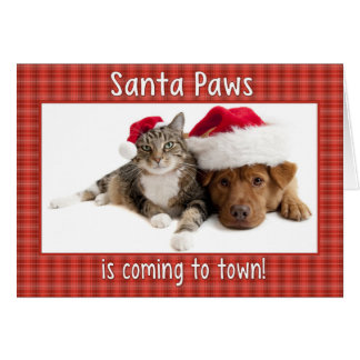 Santa Paws is Coming Card