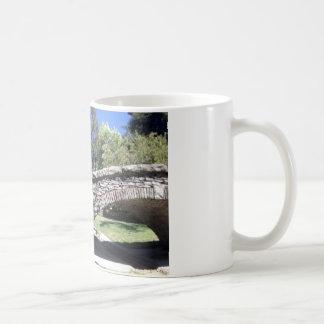 Santa Rosa du sud six Mug Blanc