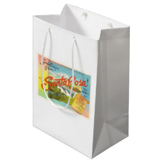 Santa Rosa New Mexico NM Vintage Travel Souvenir Medium Gift Bag