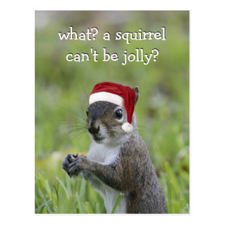 Santa Squirrel CAN be Jolly this Christmas ... Postcard
