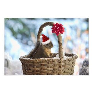 Santa Squirrel in Snow Photographic Print