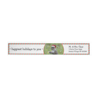 Santa Squirrel is Coming to Town This Christmas Wraparound Return Address Label
