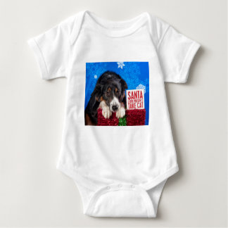 Santa take cat baby bodysuit