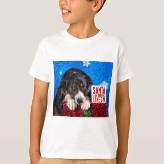 Santa take cat T-Shirt
