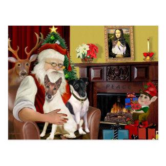 Santa - Two Smooth Fox Terriers Postcard